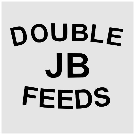 Double JB Logo - Orion Business Design
